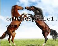 virtuelle pferdespiele kostenlos